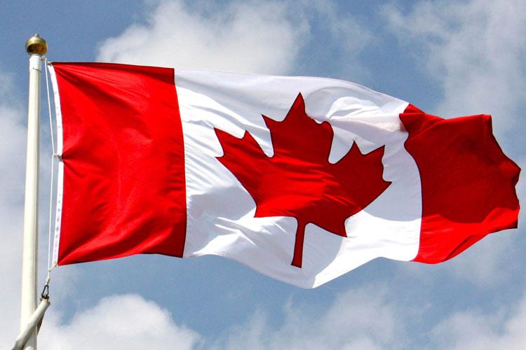 Unlocking Canada's Free Money Vault